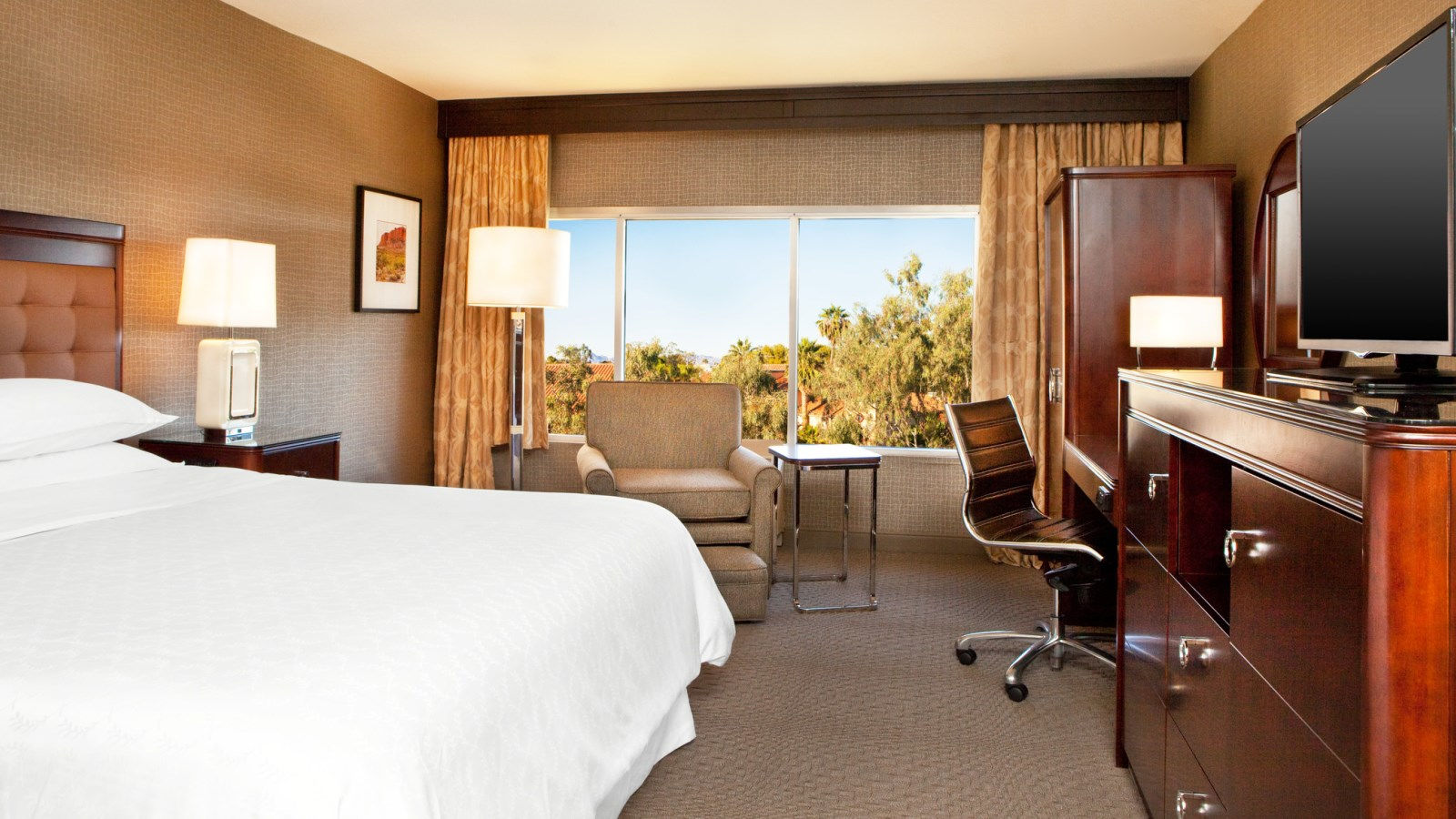 Traditional Room | Sheraton Phoenix Airport Hotel Tempe